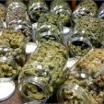 Opening a Dispensary
