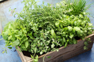 Fresh herbs. By Suzanne.