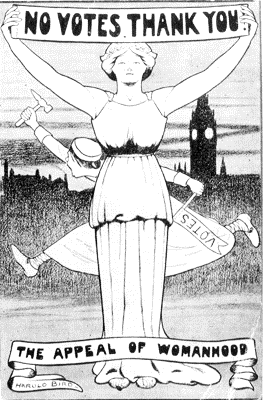 National League for Opposing Women's Suffrage cartoon