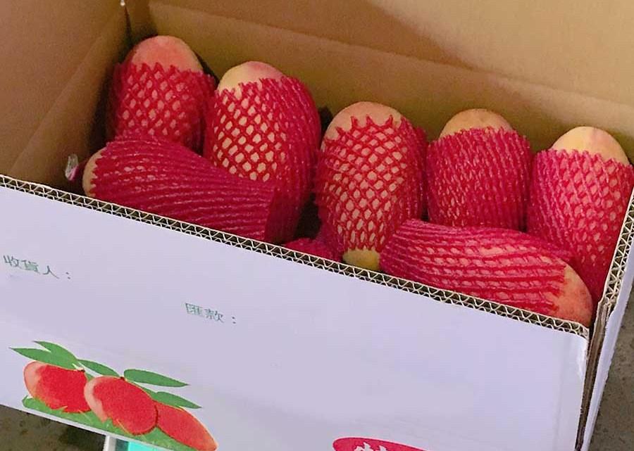 【2019年產季已結束】水蜜桃芒果(紅龍芒果)開箱,順便跟大家分享水蜜桃芒果冷知識