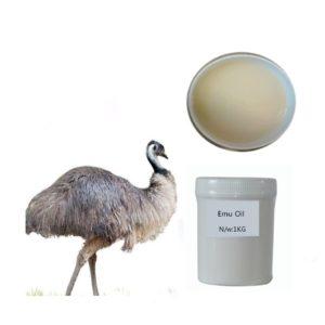 Масло страуса эму происходит от одноименной австралийской птицы