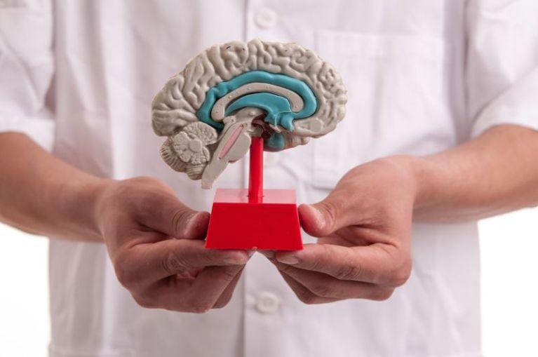Кетоны и мозг