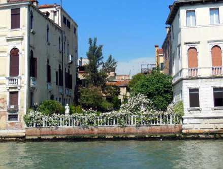 Venedig 25 Venezianischer Garten