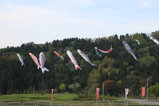 Flying Koinobori