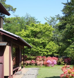Kodo Kobayashi's house