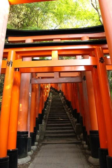 Path in Mt. Inari