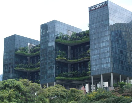 Terraced Garden in the City