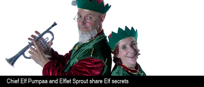 elf family christmas event