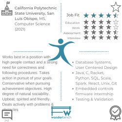 Wonderbench Software Engineering Candidate 242