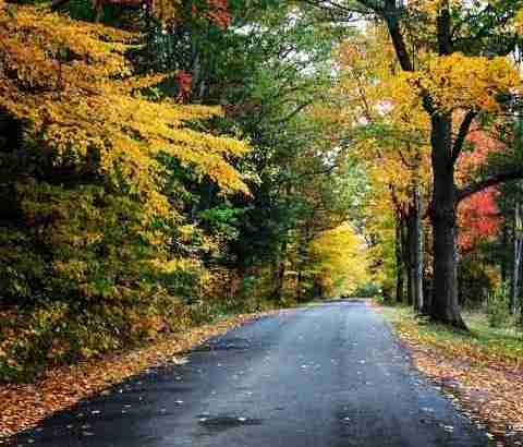 Fall day in Upstate NY