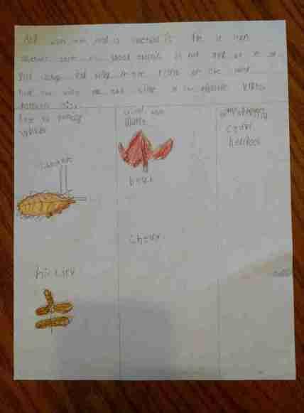 Bigger Hearts Science Notebook page- Farmland