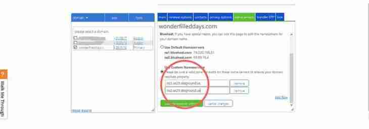 Filling in Custom name transfer fields on Bluehost