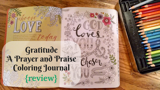 Graitutde A Prayer and Praise Coloring Journal Review