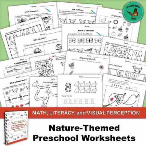 Nature-Themed Preschool Worksheets1