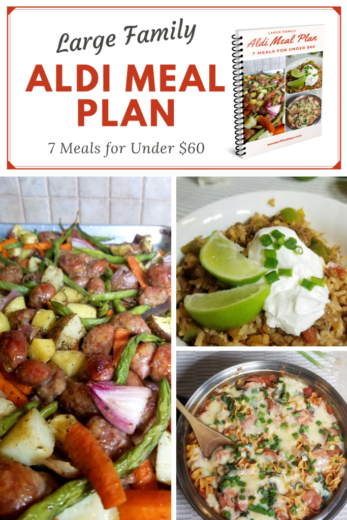 Large Family Aldi Meal Plan Budget