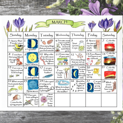 March Nature Calendar & Nature Challenge Activity Pack