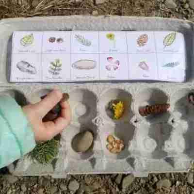Printable-Egg-Carton-Nature-Scavenger-Hunt