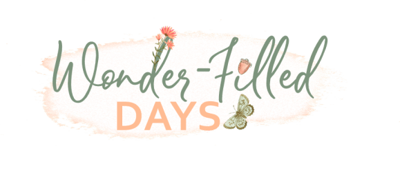 Wonderfilled Days