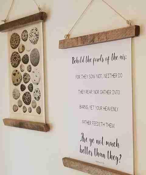 Bird's Nest Posters