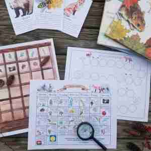 November Nature Study Calendar, books, flashcards
