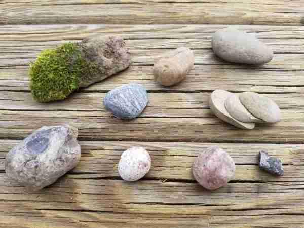 Nature Curriculum Rock Scavenger Hunt