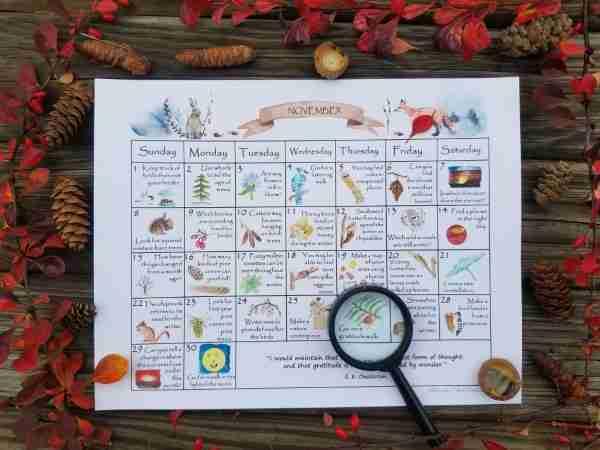 November Nature Study Calendar2
