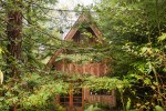 Japanese Forest House 4