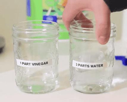 Vinegar-Life-Hacks