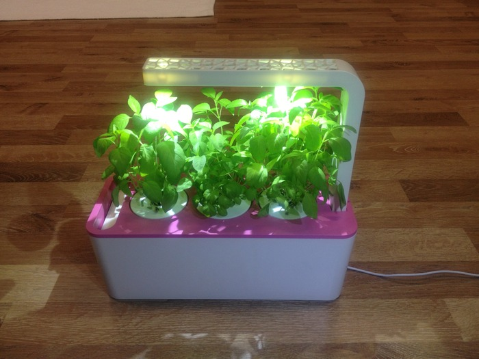 Smart Herb Garden 3