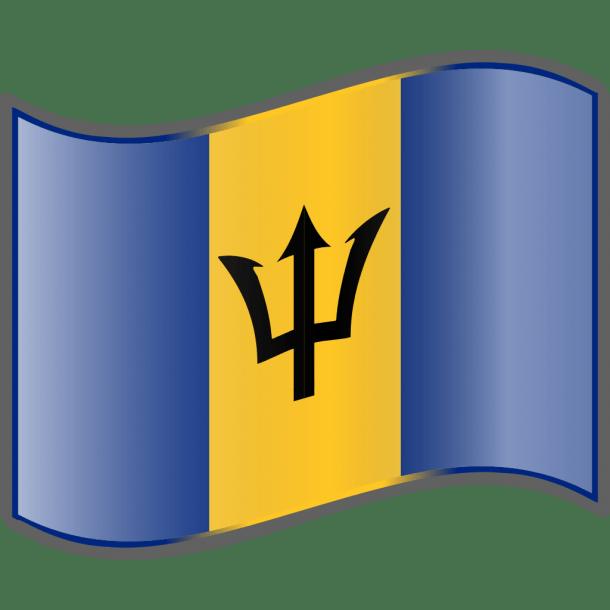 Barbados flag  (14)