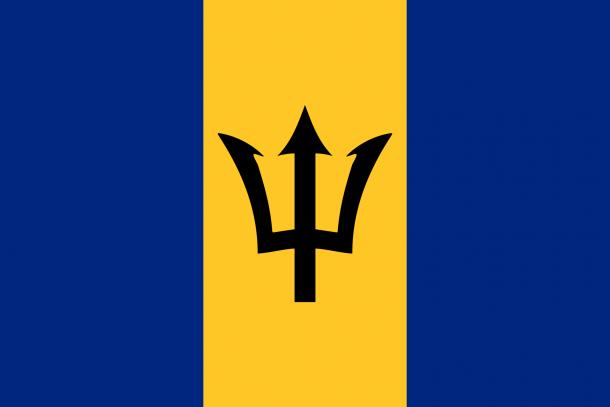 Barbados flag  (3)