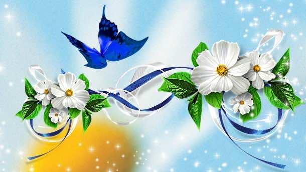 flower wallpaper 24