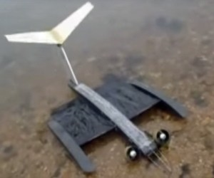 drone with membrane wings