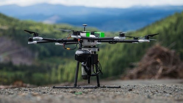 This Drone Can Plant New Trees In Lesser Time And Cost