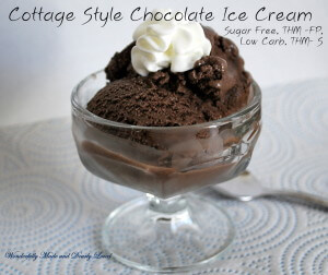 Cottage Style Chocolate Ice Cream (2)