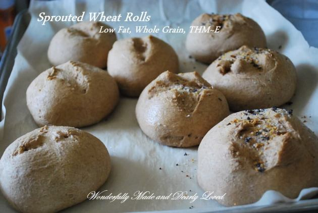 Sprouted Wheat Rolls made with Sprouted Wheat Dough