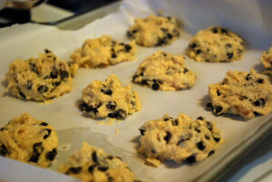 Chocolate Chip Cookies (THM S, Sugar Free, Low Carb)
