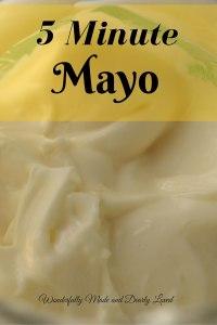5 Minute Mayo (THM S, Sugar Free)
