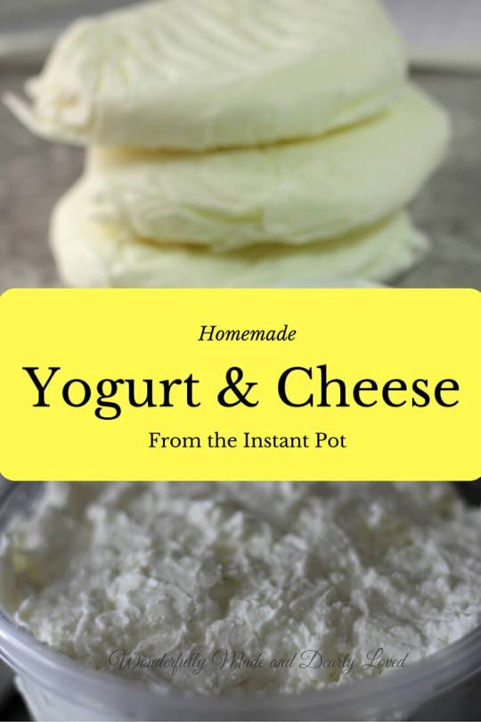 Homemade Yogurt & Cheese (THM S or FP) use fat free or 1% milk for FP