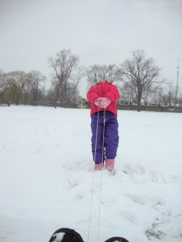 Attempting to pull me in the sled