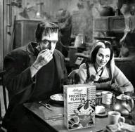 Awesome! I was a Munsters fan. The Addams Family was not on TV where I grew up.