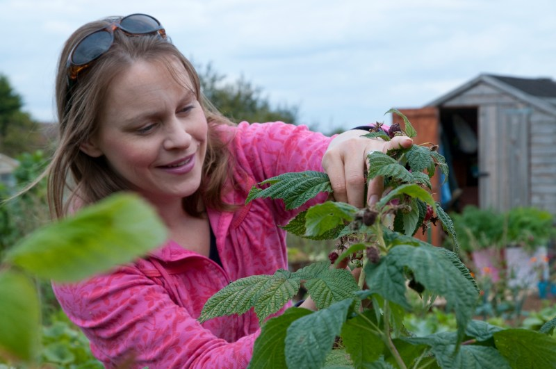 freelance gardening journalist Alice Whitehead grows her own