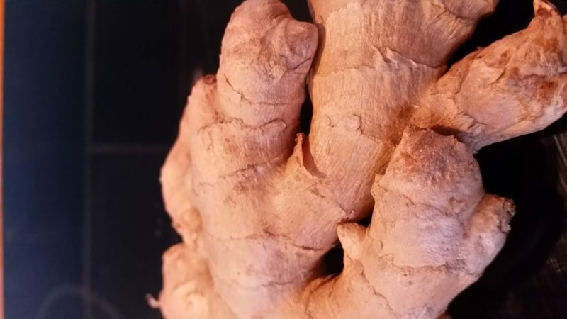 Root ginger can be grown in Britain says gardening journalist Alice Whitehead