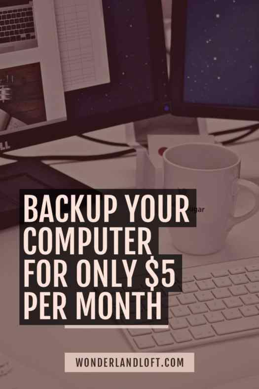 Backup your computer cheap