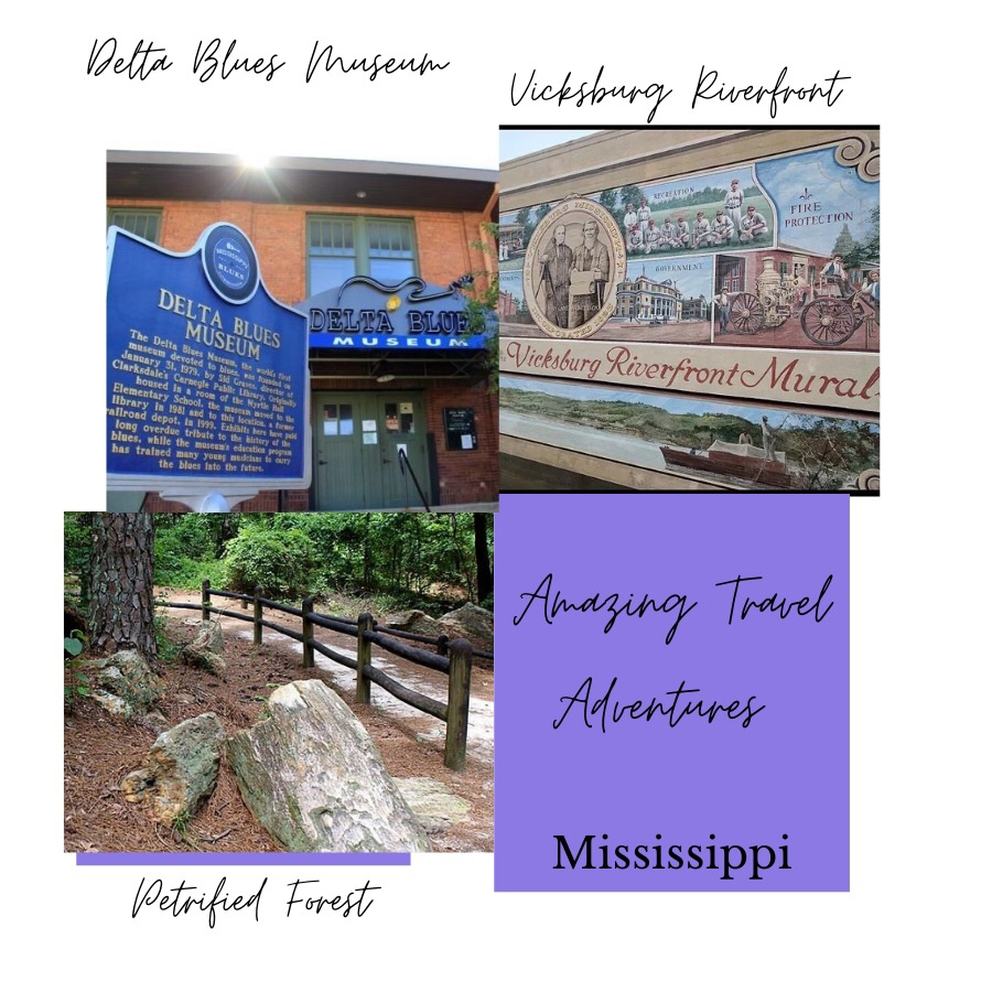 Photos show Amazing Travel Adventures. Top left photo shows the Delta Blues Museum. Photo top right shows Vicksburg Riverfront Murals. Bottom left photo shows The Petrified Forest. All photos are travel destinations.