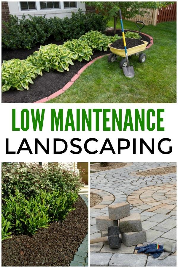 Low Maintenance Landscaping Ideas on Low Maintenance Backyard Designs  id=85585