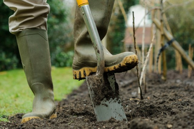 How to do soil improvement the correct way