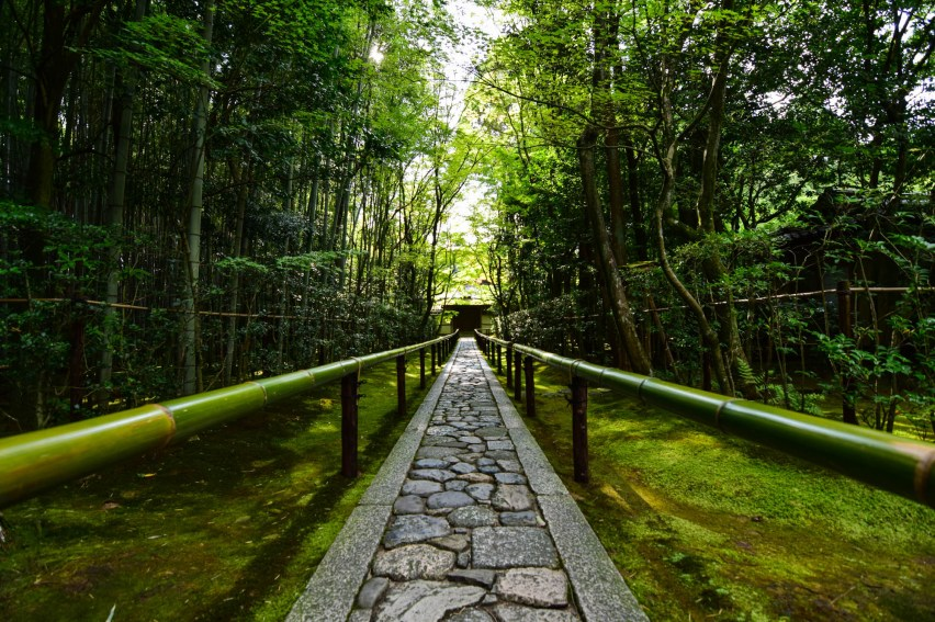 A narrow cobblestone path passes through a green Japanese zen garden. The pathway is centered with green bamboo handrails on both sides. The parallel lines in the photo aim towards a vanashing point.