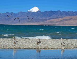 Manasarovar lake with Mt Kailash on the background