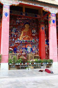 Nun prostrating in front of Medicine Buddha image